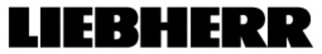 Logo_LH_N100.jpg