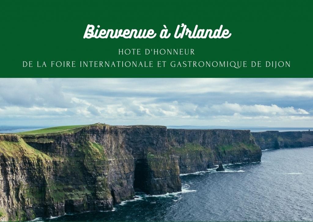 Irlande_hote_honneur_2020.jpg